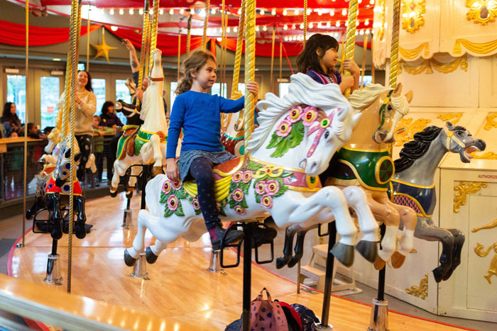 Girl in Blue Shirt on Carousel