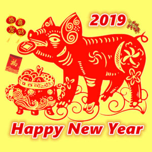 Vancouver Chinese New Year Parade in 2019 | 溫哥華新春游行 @ Chinatown Vancouver